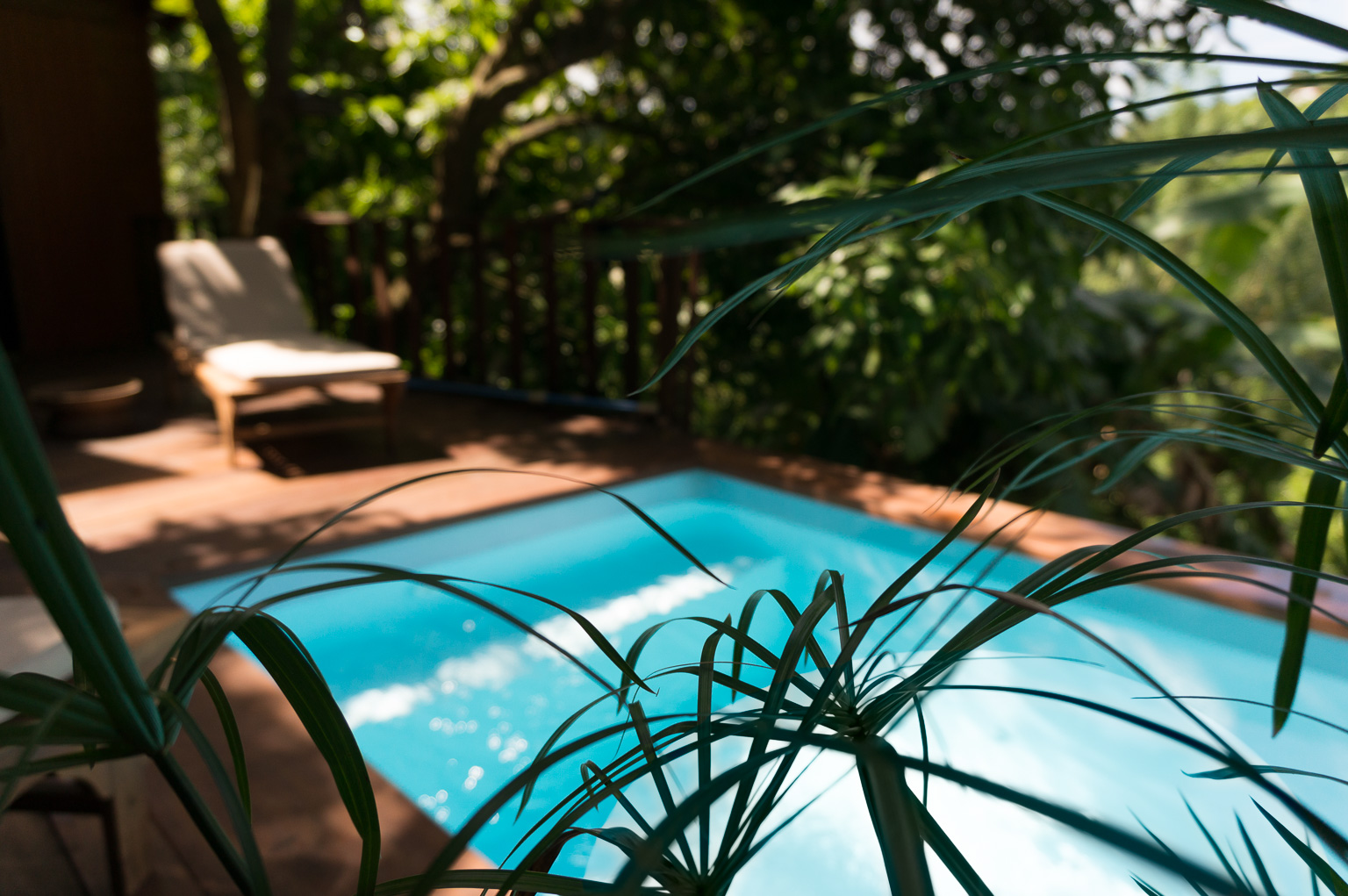 Mango Lodge Rates Packages